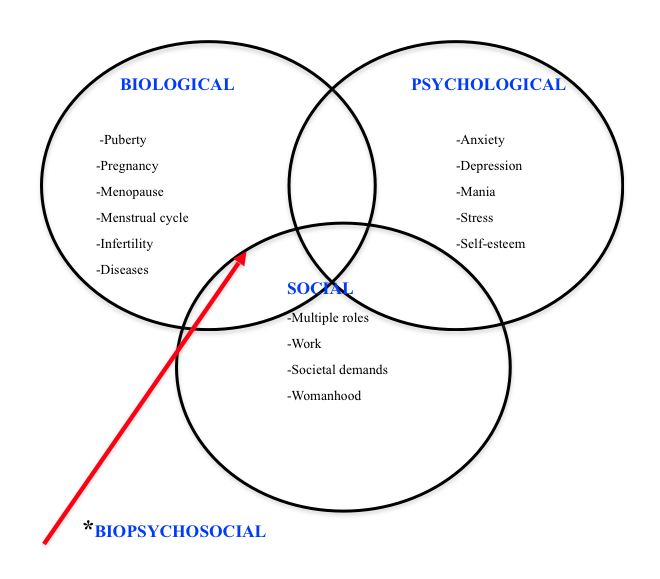 Biopsychosocial Model for The Women rsquo s Health Program